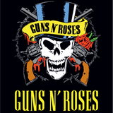 Guns & Roses Grandes Exitos