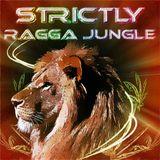 DJ STP STRICTLY RAGGA JUNGLE RADIO 001 www.strictlyraggajungle.com