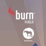 "Electric Castle ""Burn & Artskul Workshop"" Contest Mix"