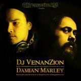 Dj Venanzion - Damian Marley Mixtape 2011