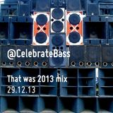 That was 2013 mix | Celebrate Bass