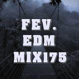 FEV. EDM Mix 175