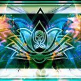 Mana°Wizard @ Holographic Universe meets Namasteria 2014