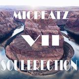 SOULERECTION VOL.7 (pt.1)