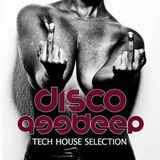 Podcast 040# Disco Deep 2013 by Aymen