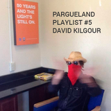 Pargueland Playlist #5: David Kilgour ( & The Heavy Eights, The Clean, The Great Unwashed)