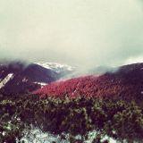 sinest8 - profound winter