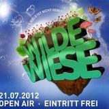 """Dominic Banone @ """"Wilde Wiese"""" Open Air  21.07.2012 [Hofheim, Germany]"""