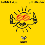 DJ Mellow Summer Mix 17