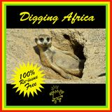 "DJ NOMAD - "" DIGGING AFRICA ""- A cross-continental journey into different African dance music styles"