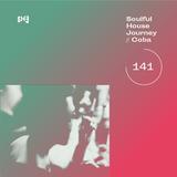 Soulful House Journey 141