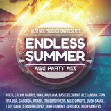 Endless Summer 2014 Mini Party Mix (Mixed by Mizu)