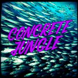 Concrete Jungle - 2019-01-03 - Dj Stalefish - New Fracture, Break, Benny Page, Sweetie Irie, RMS