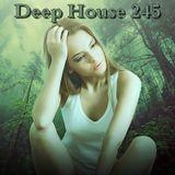 Deep House 245
