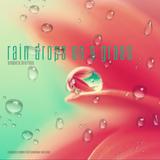 V.A. - Rain Drops On A Grass