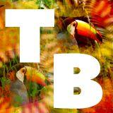 Tropical Beats Radio Show Feb '19 Feat Poirier, Dubben, Manati, Yaaba Funk, Fgon, El Peche, Populous