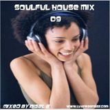 NIGEL B (SOULFUL HOUSE MIX 09)