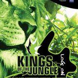 Bassline Generation live @ Kings of the Jungle 4, MS Connexion, Mannheim (02.10.2003)