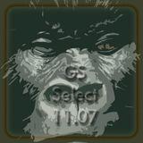 GS Select 11.07