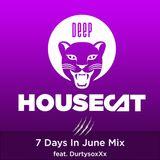 Deep House Cat Show - 7 Days In June Mix - feat. DurtysoxXx