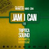 JAM I CAN PROMO MIX - TRIPTICA SOUND