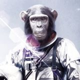 Bonobo Astronaut Radioes Chinese Citizen