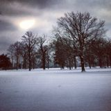Winter Weather Advisory [Ambient Blizzard Mix for sleep & relaxation + original field recordings]