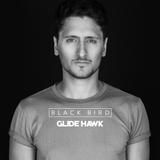Glide Hawk - Black Bird #3