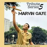Tribute Series V -Marvin Gaye