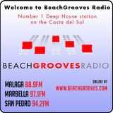 The Beach Groove Radio Sessions   Chill's House with Big Chill  #29
