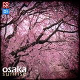 Osaka Sunrise 015