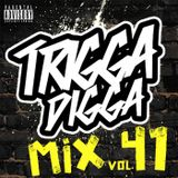 TRIGGA DIGGA MIX VOL. 41