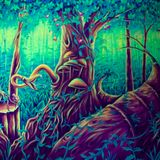 de Nachtpapegaai bezoekt het magisch bos
