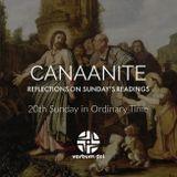 Transfiguration (SOW on Readings of Sun - Aug 6 2017) - Fr. James McTavish, FMVD)