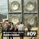 NTR S04E09 - Riddim Section