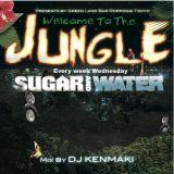 Welcome To The Jungle - DJ KENMAKI