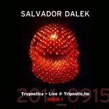 Day 065.02 : ReFresh - Salvador Dalek Live (2011_0915) at Tripnotic.fm... Hour 1