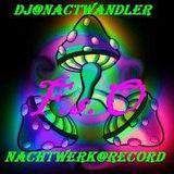 Dj-Nachtwandler-Nachtschwämer dEr Nacht. 2012. F.s.O.Nachtwerk Record