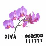 Noisey Mix: 000000 - 111111 by RIVA
