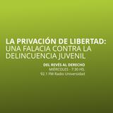 29 OCT 2014 - Privación de la libertad como falacia para la reducción de la delincuencia juvenil