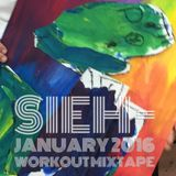 JANUARY 2016 WORKOUT MIX