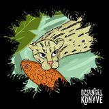 DJ Ren + Mentalien at Dzsungel Konyve 2018.09.18