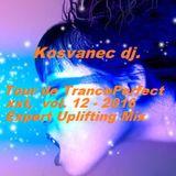 Kosvanec dj. - Tour de TrancePerfect xxt vol.12-2016(Expert Uplifting Mix)
