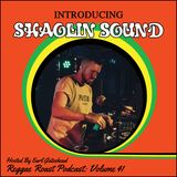 RR Podcast Volume 41: Shaolin Sound Guest Mix - Hosted by Earl Gateshead