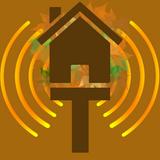 Dan's Big Old Mess with Dan Brown on Treehouse Radio, Nov 25, 2019