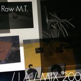 IA MIX 200 Raw M.T.