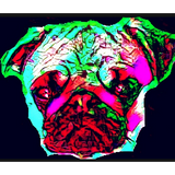 Trance Innit?!!  By Ste Ellis 24/9/19 Techno-Melodic Techno