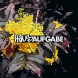 Hausaufgabe 84 (2016-05-31)