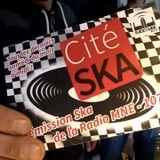 Cité SKA #2— JahOnSlide—31.01.2015