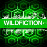 DC310 podcast mixed by Wildfiction